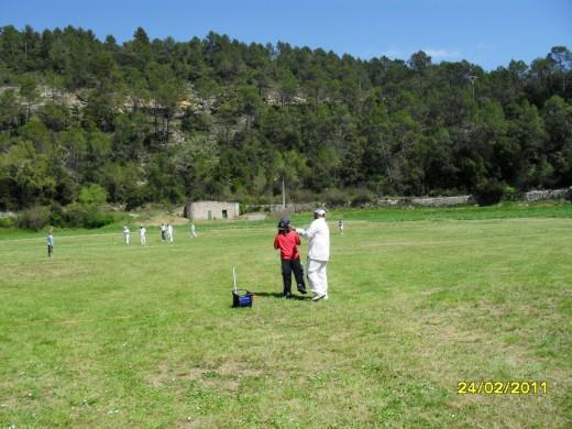 cricket7.jpg